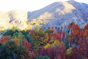 Qalat-landscape-1024x682